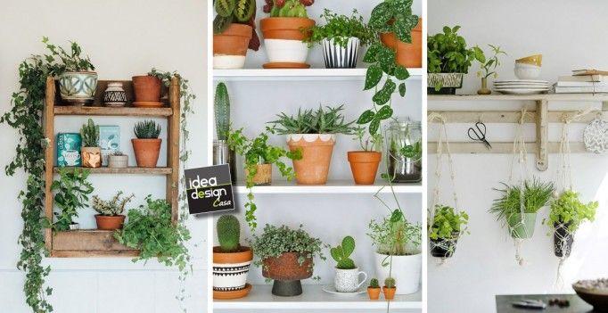 Decorare le mensole con le piante ecco esempi decorare