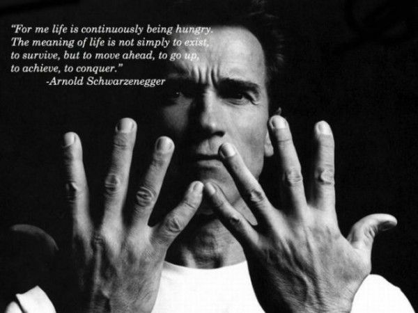 How to Stay Motivated in the New Year Health \ Fitness Pinterest - new arnold blueprint ebook