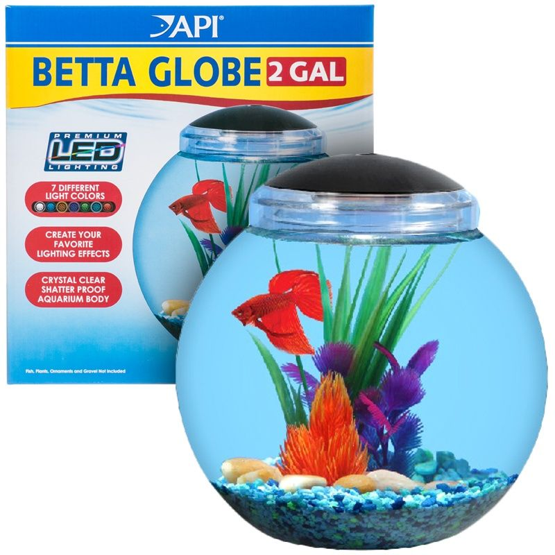 Betta Fish Bowl Decorations Api Betta Globe Aquarium Kit  15 Gal  On Sale Httpwww