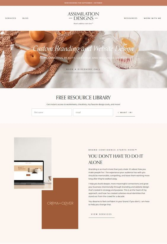 Wordpress Website Design By Assimilation Designs In 2020 Wordpress Website Design Web Design Ecommerce Web Design
