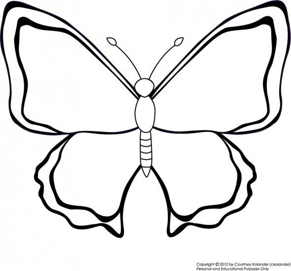 Basic Butterfly Coloring Page