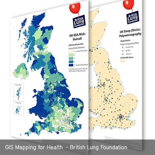 Pin by Map Makers on GIS Consultancy Services | Mapping