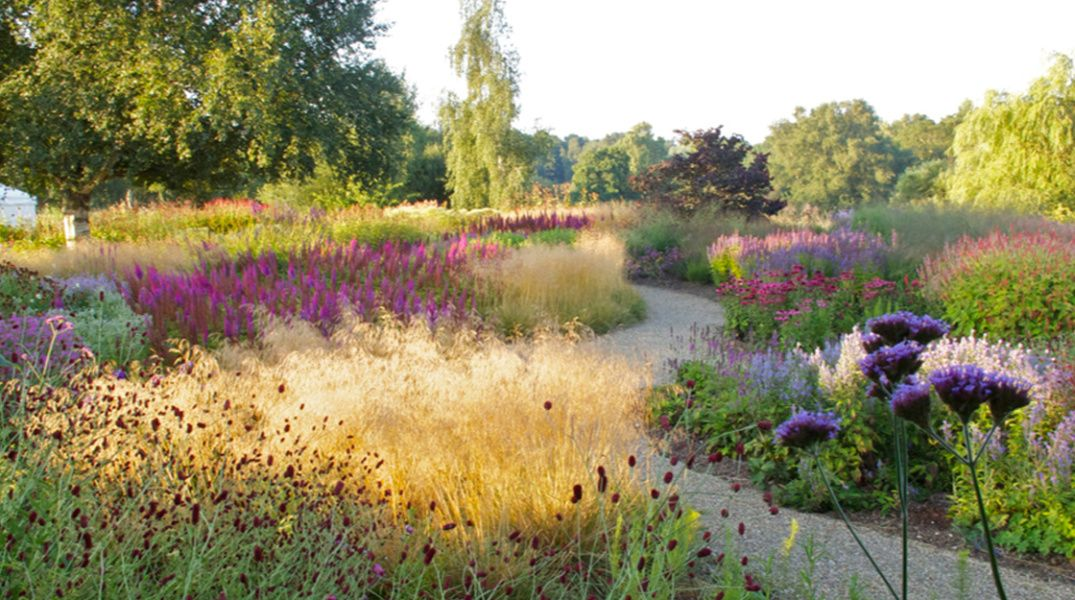 Landscaping by piet oudolf kent outside pinterest for Landscapes in landscapes piet oudolf