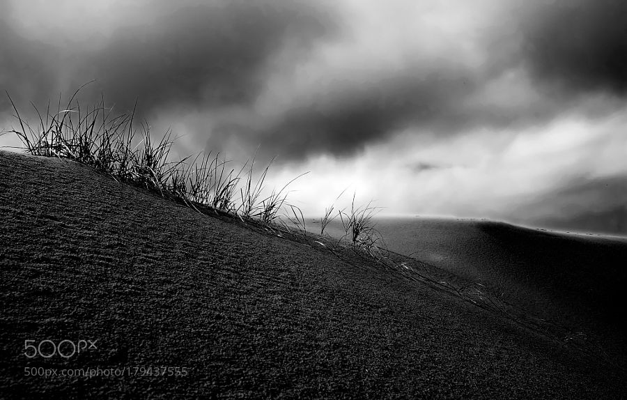 Rain....maybe by OleNielsen