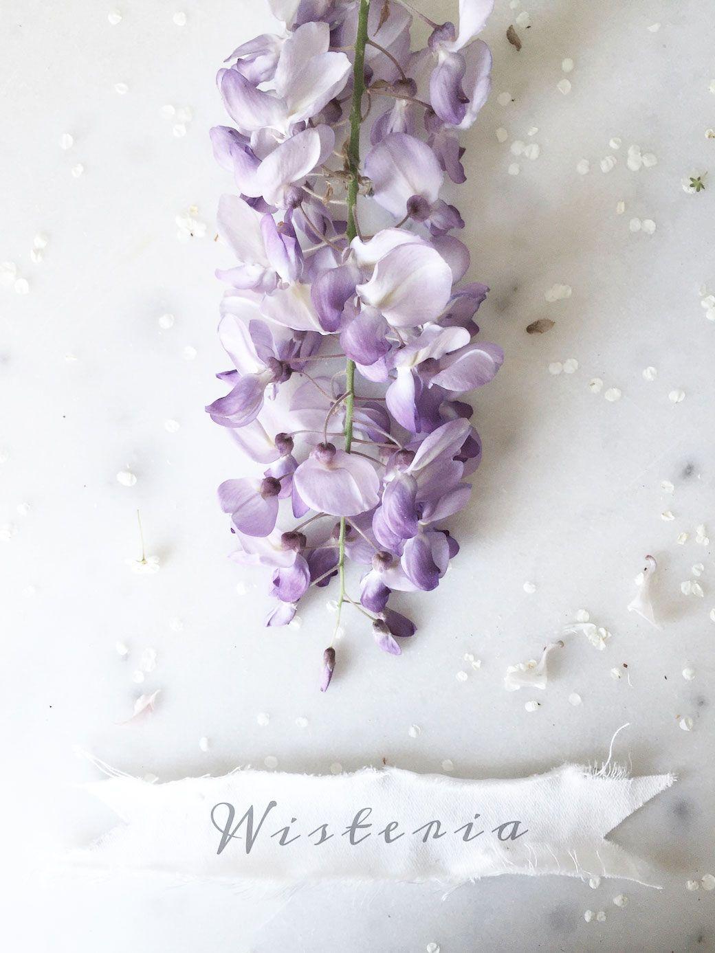 How To Make A Beautiful Wisteria + Iris Bouquet Iris