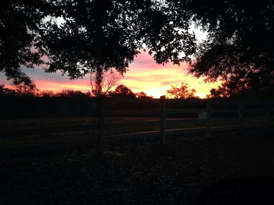 Beautiful sunset at CanopyCove take a moment tonight to