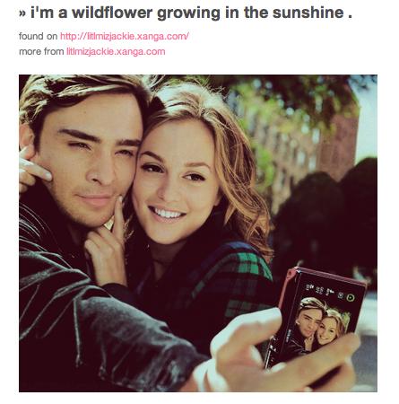 Wildflower lyrics by a fan