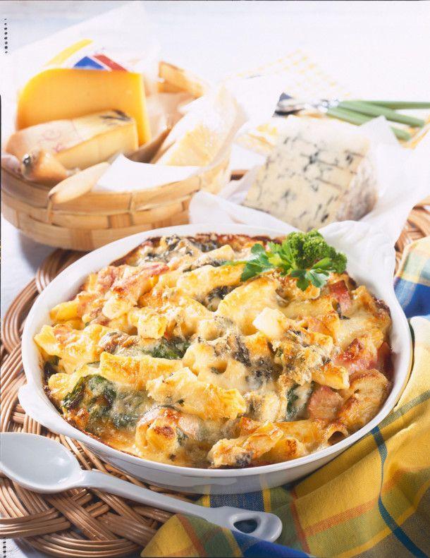 Nudelauflauf mit Vier-Käse-Soße Rezept