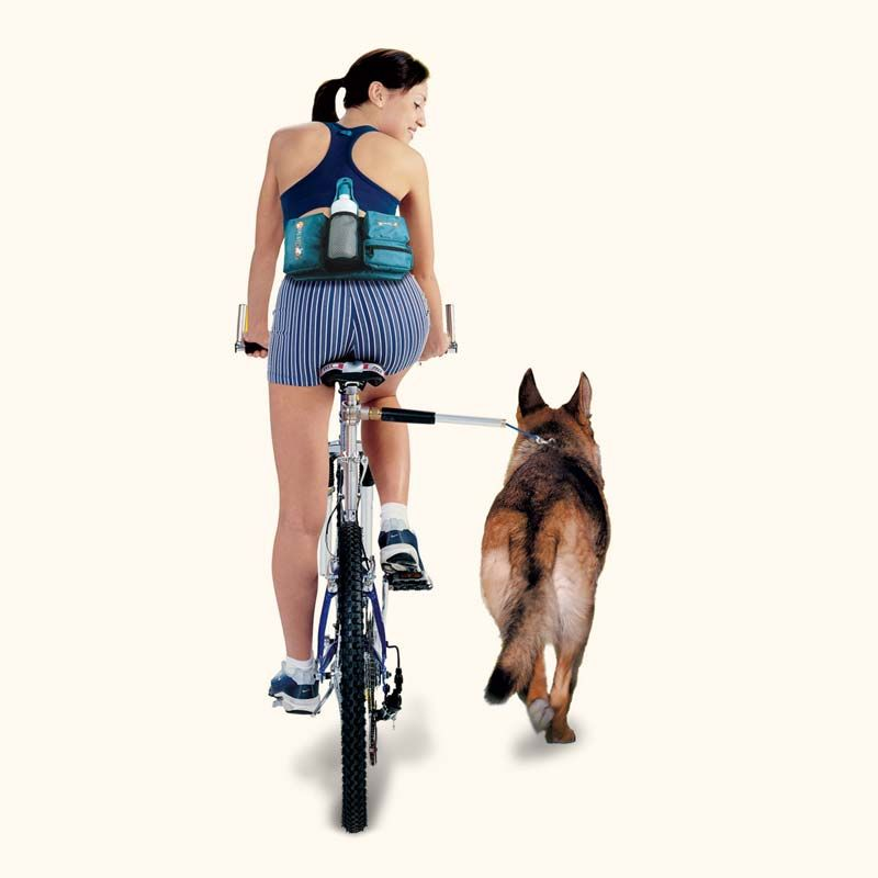 Bike Tow Leash Dog Bicycle Attachment Biking With Dog Walky Dog