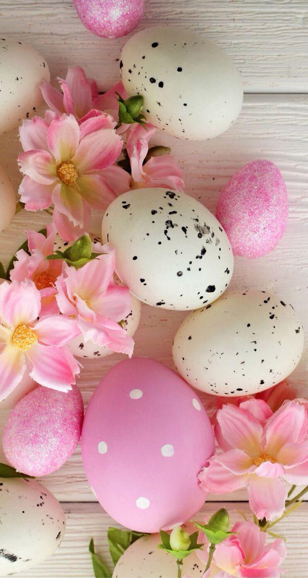 ЄคᎦ৳ҽr🐇🐥🐑 Easter wallpaper, Happy easter wallpaper, Easter