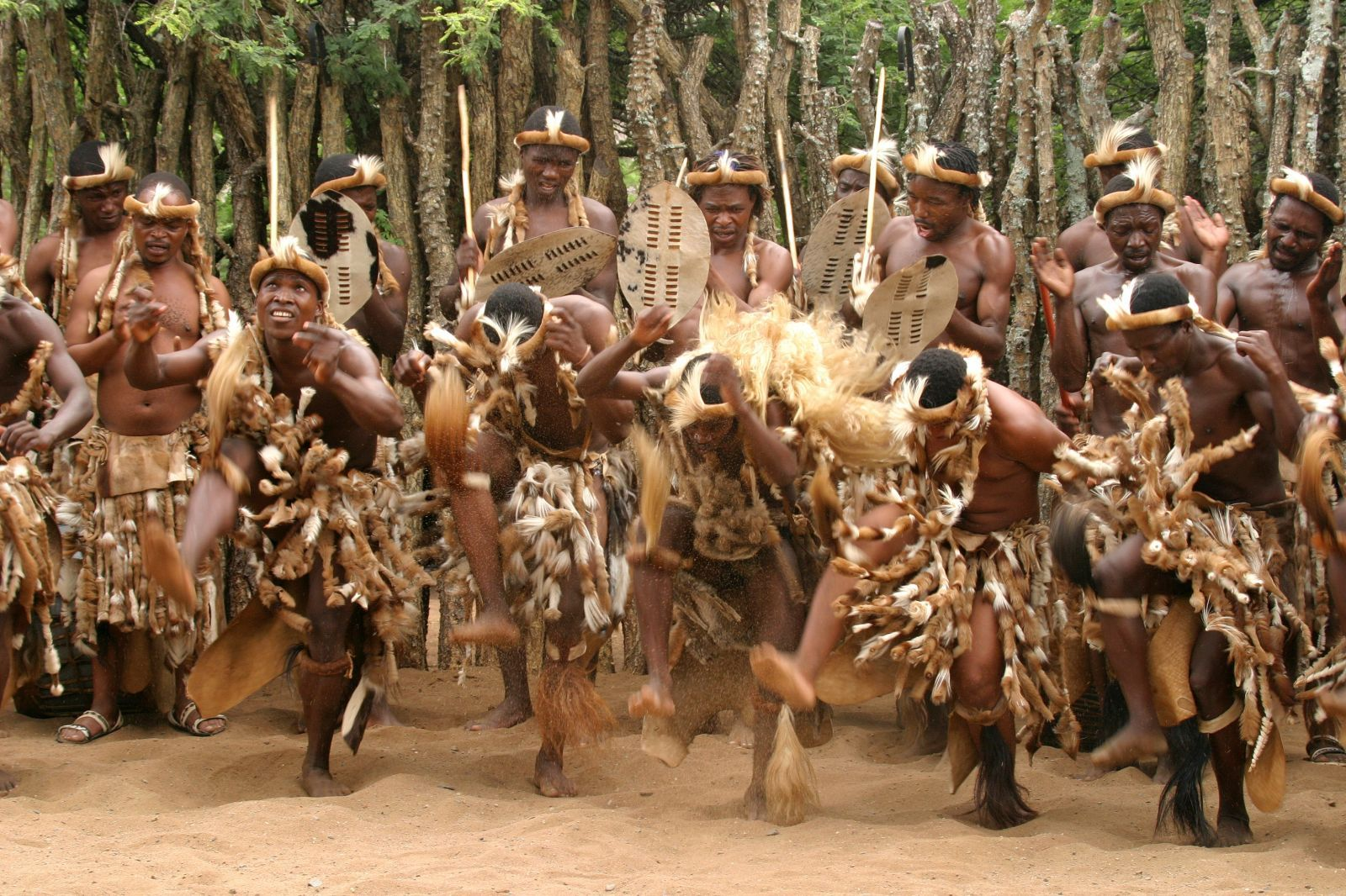 Historical Evolution Of South-African Zulu Tribe's Culture And Traditions