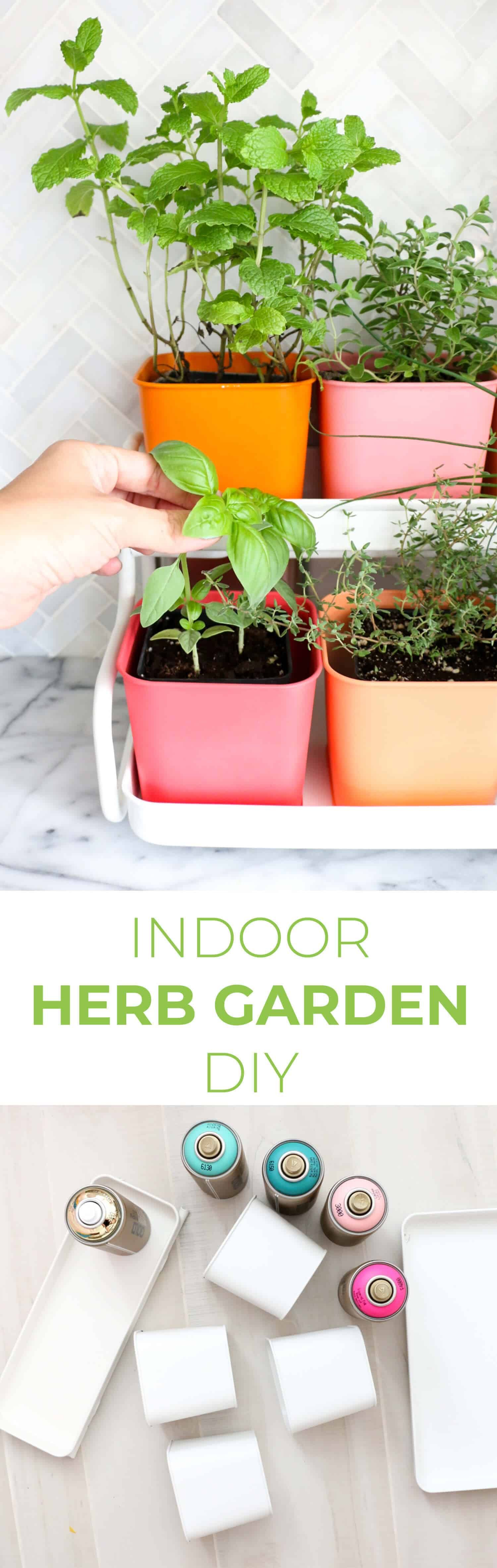 make a colorful indoor herb garden with images indoor on indoor herb garden diy wall mason jars id=53990