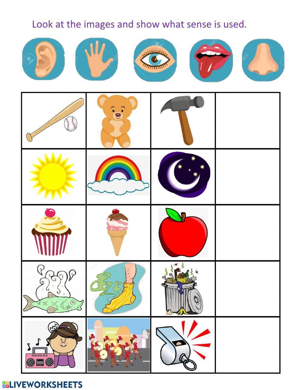 Pract Nueva 2 Five Senses Interactive Worksheet Preschool Learning Activities Five Senses Kindergarten Senses Preschool [ 1291 x 1000 Pixel ]