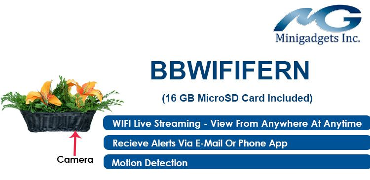 Replace your existing plant with this BBWIFIFERN for something both attractive and useful.  With the covert Wi-Fi camera you can set the device to send you alerts via email or phone app with the free downloadable app for your smartphone or tablet.
