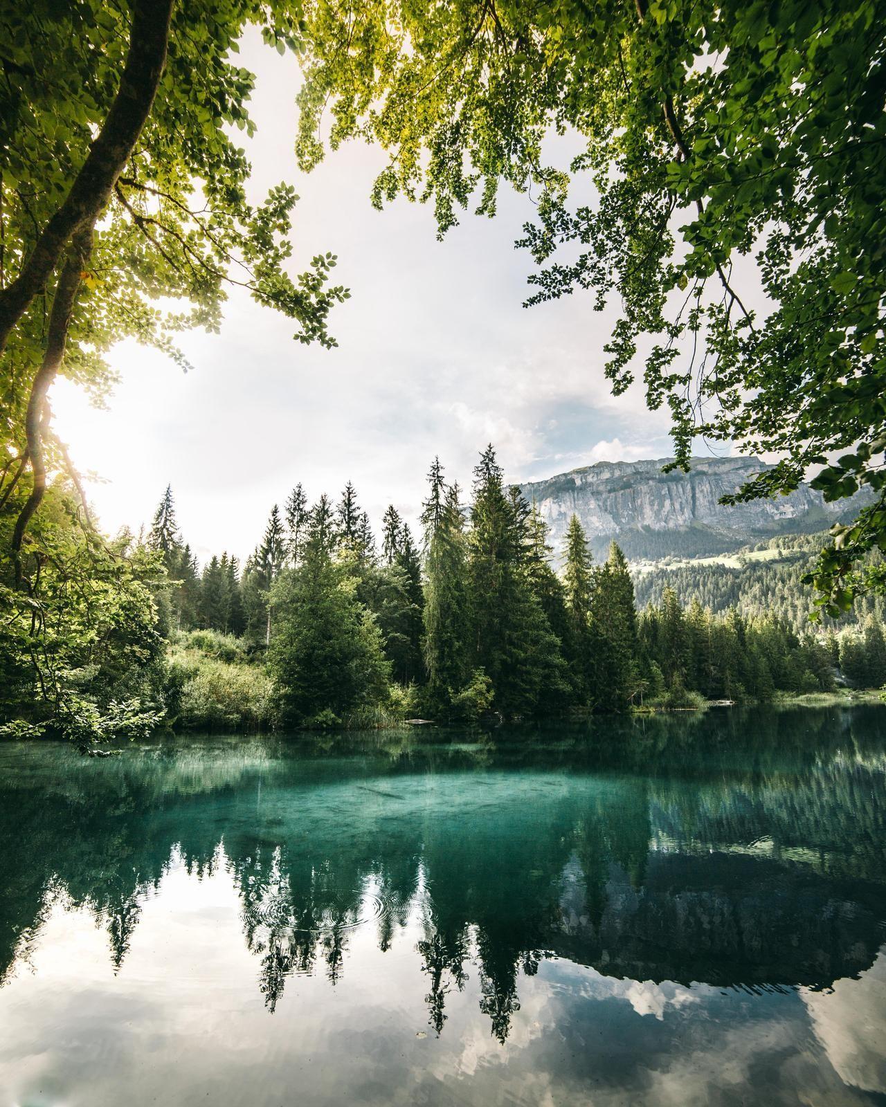 картинки природный пейзаж зож