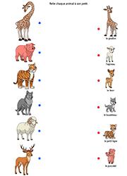 Exercice, les animaux et leurs petits Activités Scolaires