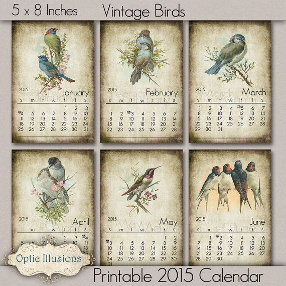 NEW - PRINTABLE 2015 CALENDAR - Vintage Bird Ilustrations