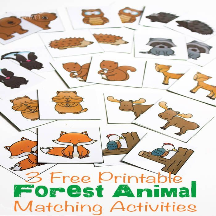 3 free printable forest animal matching activities fun learning activities for kids animal. Black Bedroom Furniture Sets. Home Design Ideas