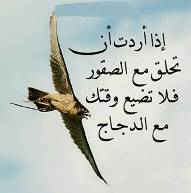 كن مع الصقور Words Arabic Quotes Turkish Language