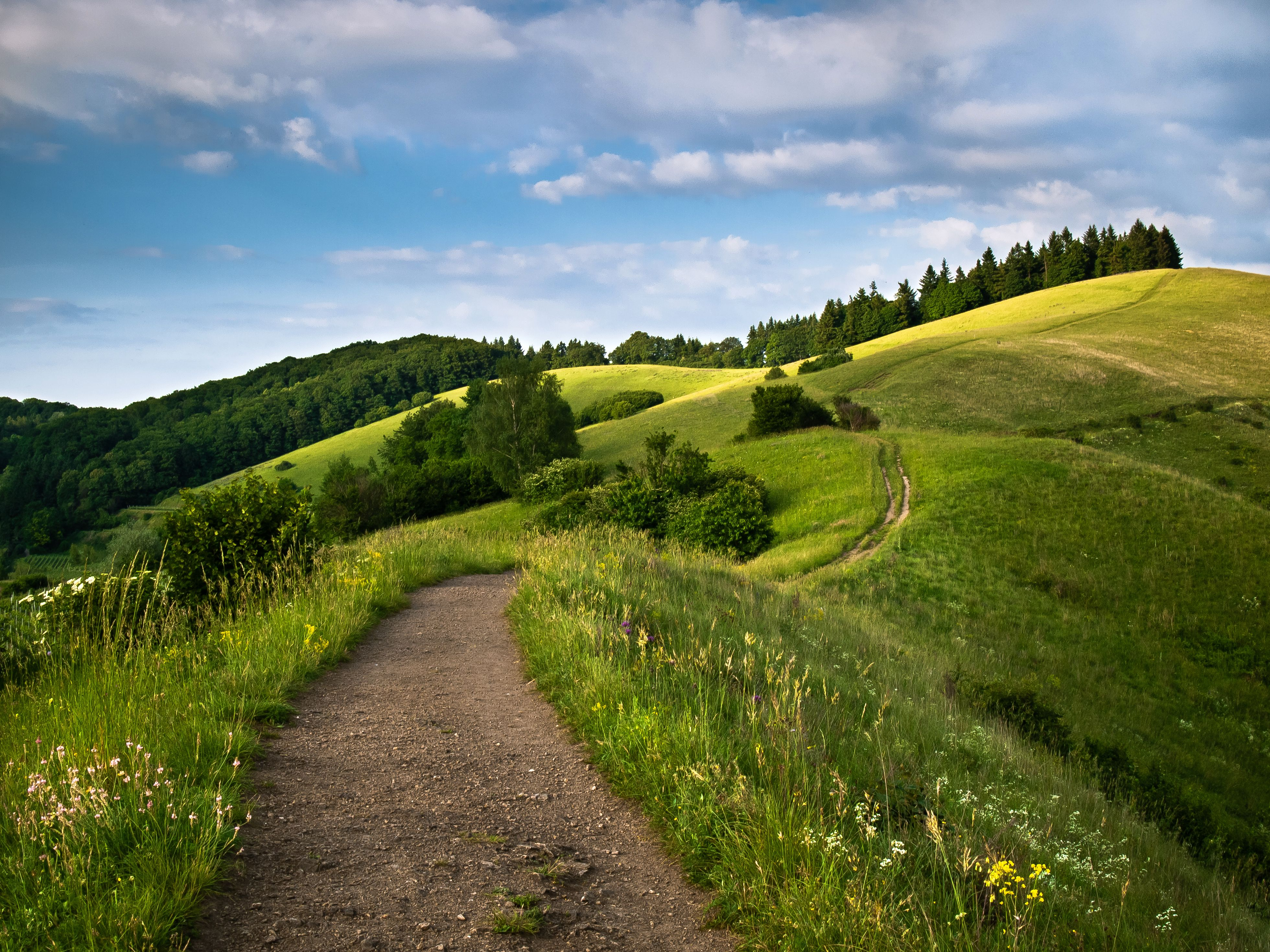 On the top of the hills Photos and Wallpapers Pinterest