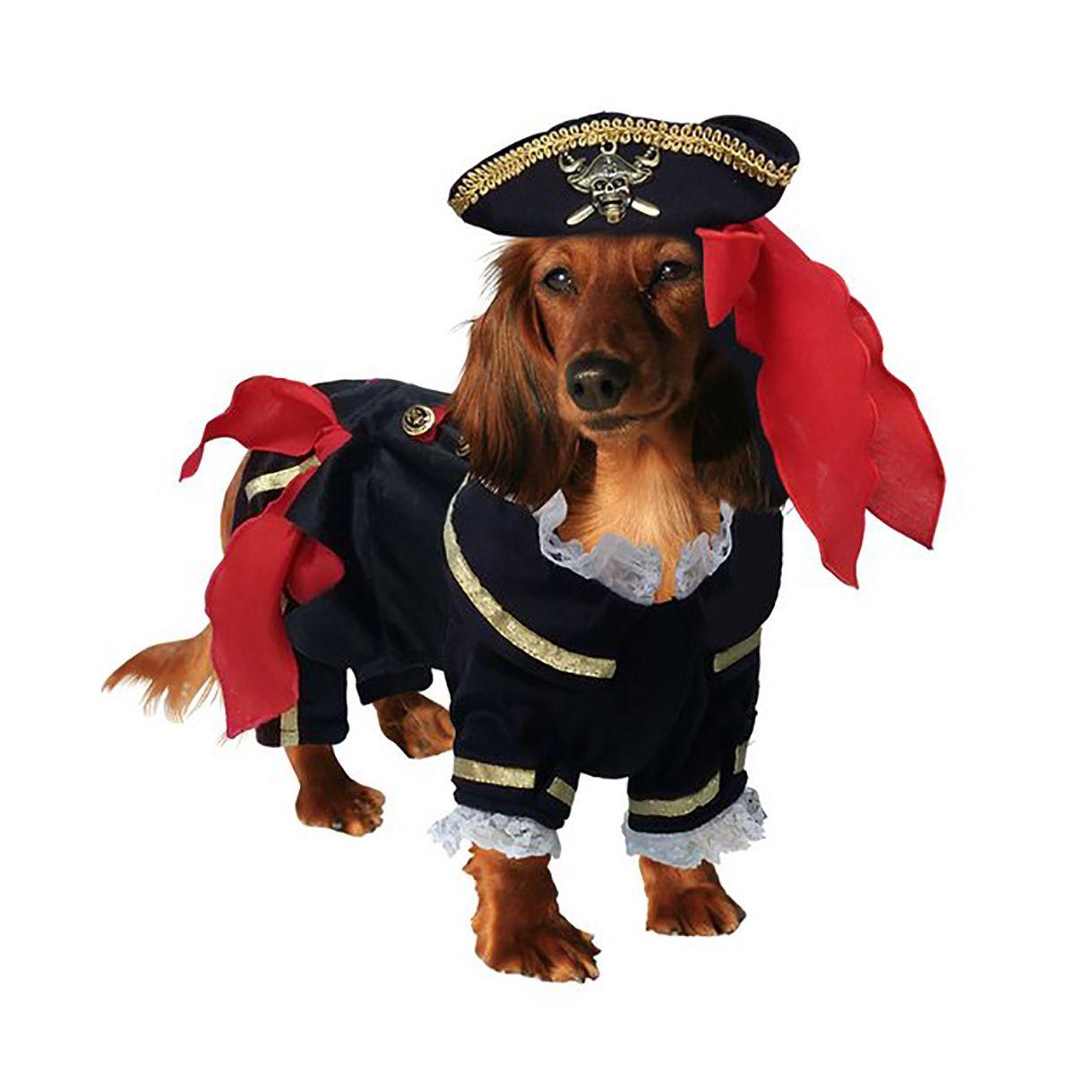 Buccaneer Pirate Dog Costume Dog Halloween Costumes Dog