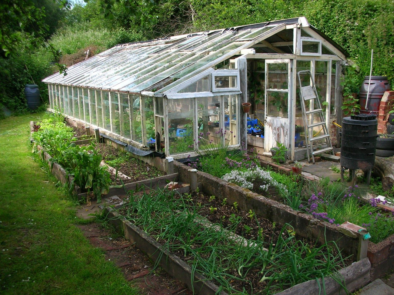 Large Greenhouse Kits Get Home Inteiror House Design Inspiration