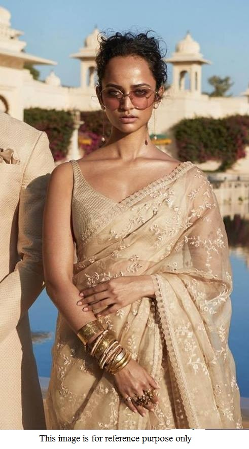 Buy Bollywood Sabyasachi Inspired Chikoo net saree