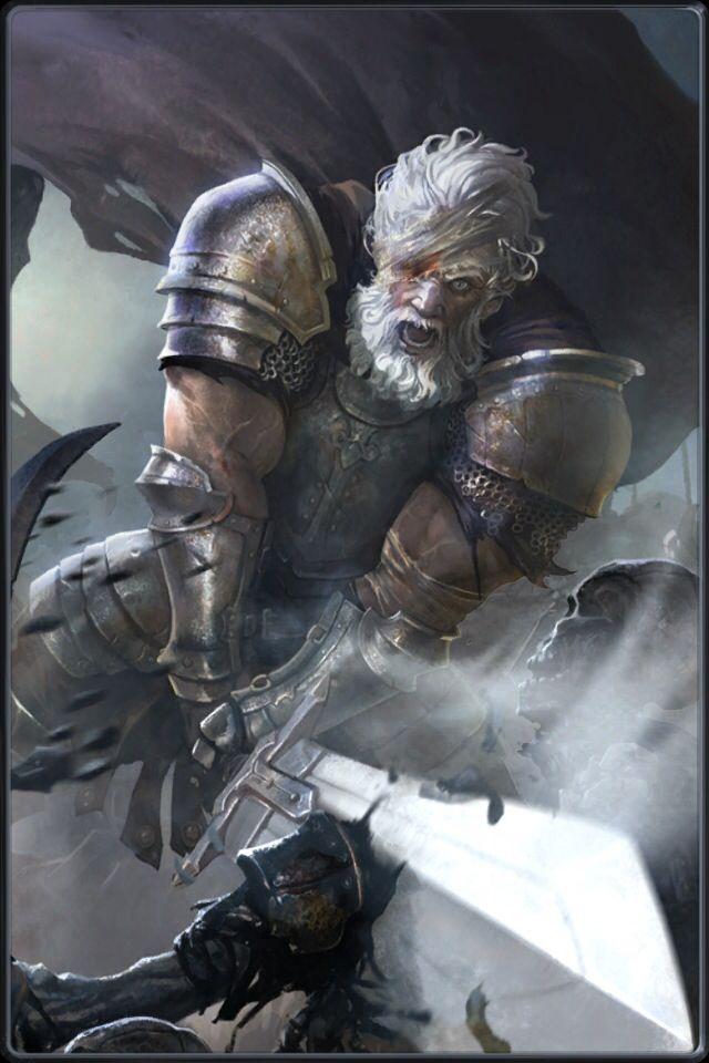Veteran paladin | Heroes of Camelot | Fantasy characters ...