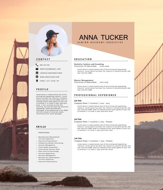 Template Of Resume Modern Resume Template  Cv Templatehedgehogboulevard On Etsy