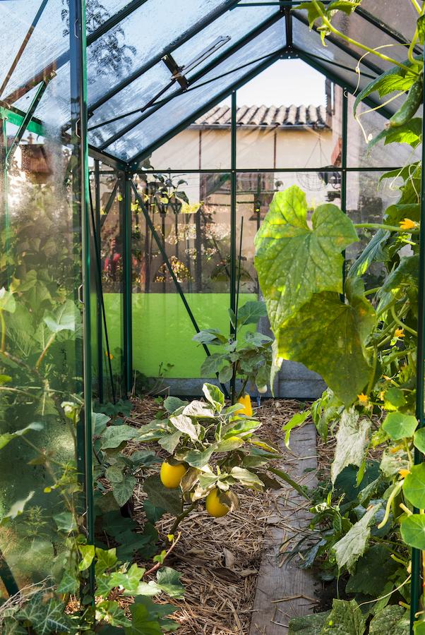 Bien choisir sa serre de jardin | Serre et abris de jardin | Serre ...