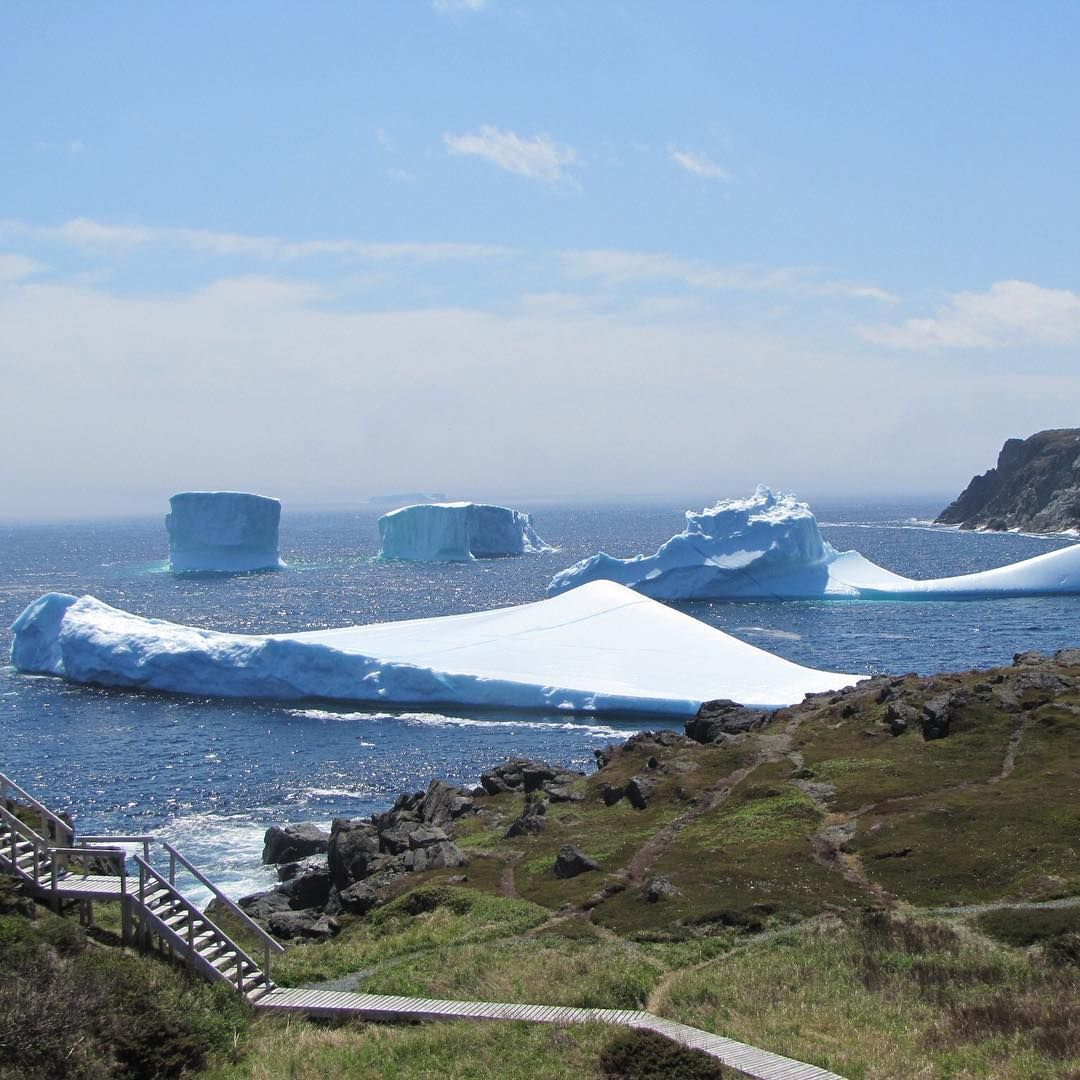 Who wants to go for a hike? Photo: Fishing Point Hiking Trail, by Grenfell Heritage Hotel & Suites. #icebergs #ExploreNL #ExploreCanada #travel