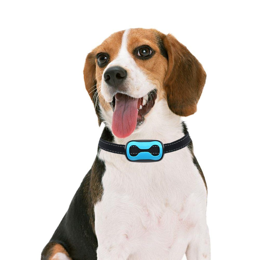 Pop View Dog Bark Collar Stop Barking With 7 Adjustable Levels
