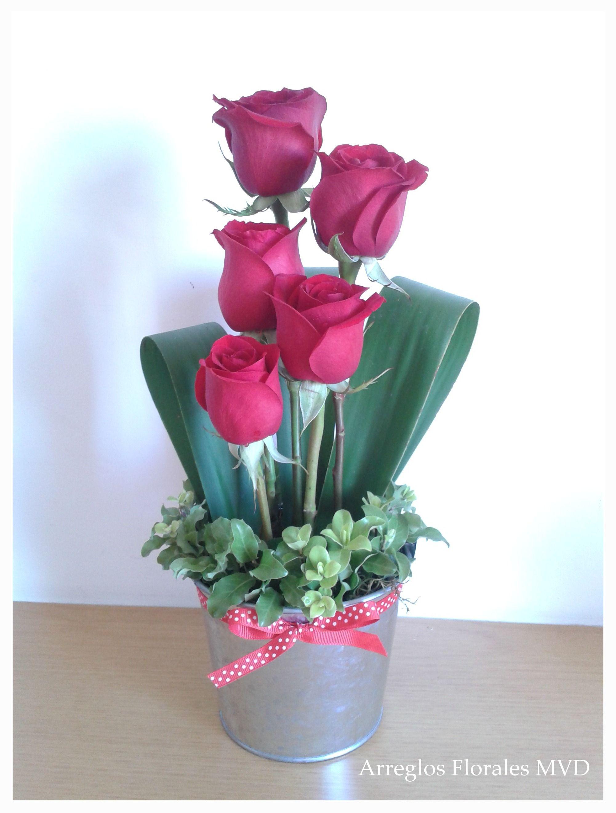 Rosas Minimalista Wwwarreglosfloralesmvdcom Arreglos