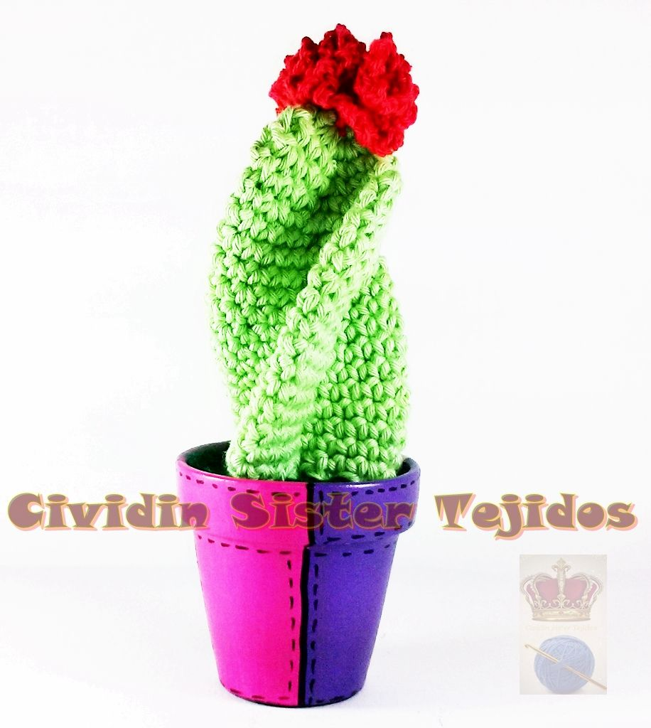Cactus tejidos al crochet con macetas de barro n 7 for Cactus enanos por mayor