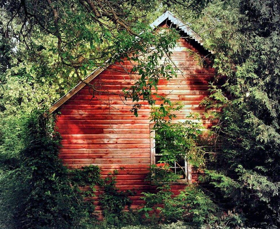 The Little Red Cabin In The Woods