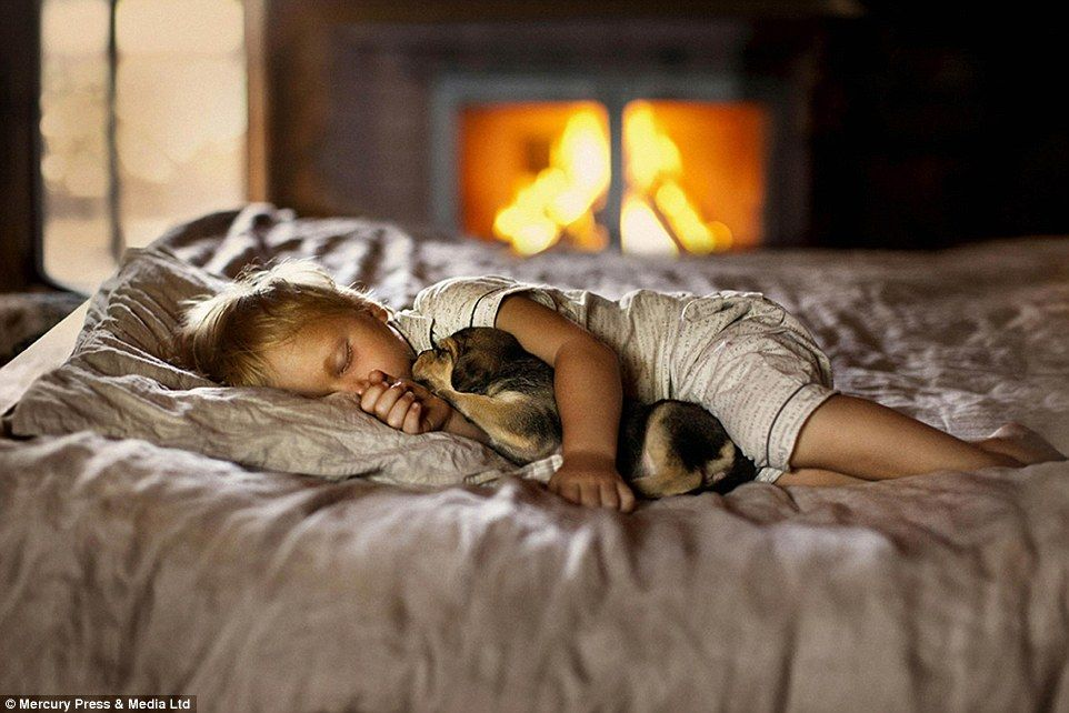 A child drifts off to sleep while cuddling her puppy - the photographer said she felt 'ins...