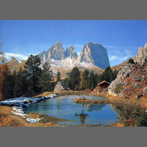 Mountain Alpine Lake Forest mural, Forest wall mural, Mural