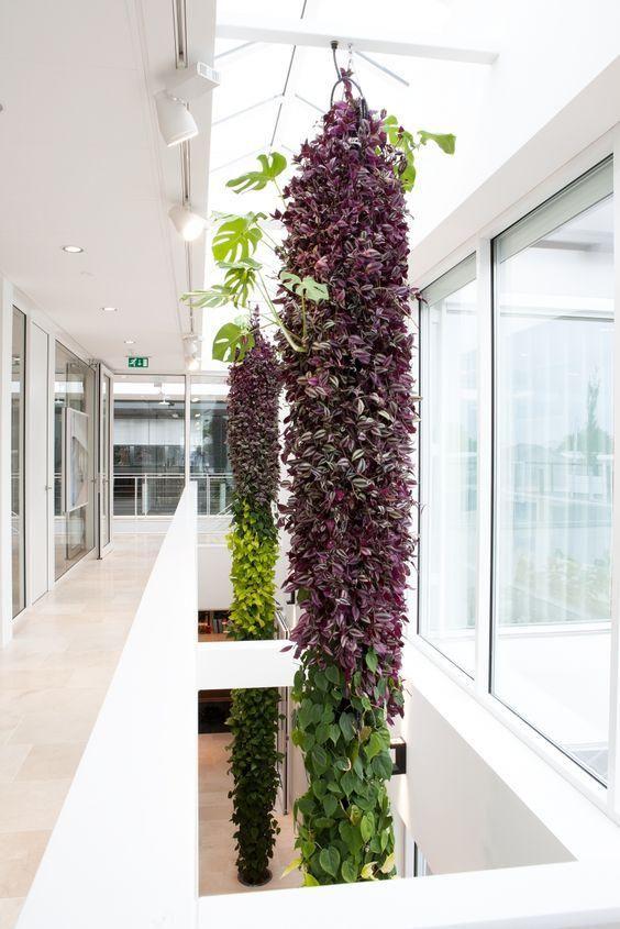 Ideas de diseños para jardines verticales Jardín vertical, Jardín - jardineras verticales