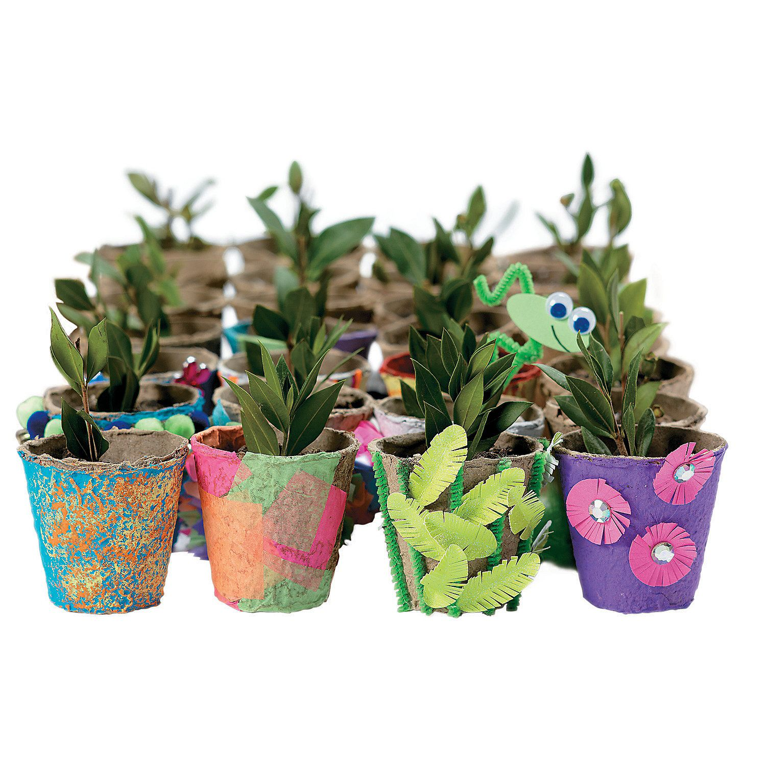 Design Your Own Watch It Grow Seed Pots Orientaltrading 400 x 300