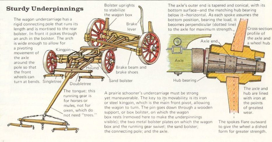 Covered Wagon Undercarriage Diagram Covered Wagon Wagon Horse