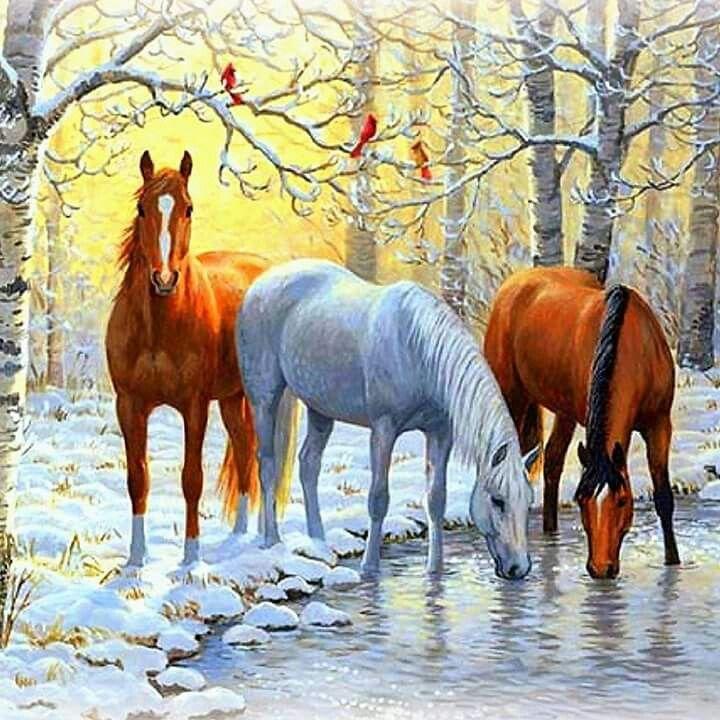 Доброго утра с лошадьми открытки, сердец