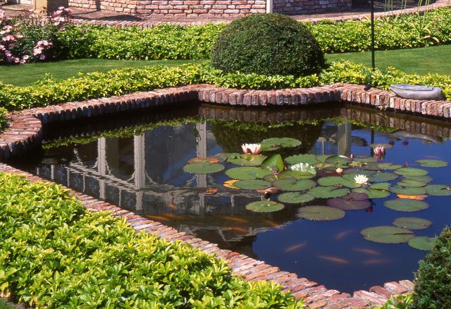 Vijver aanleggen in uw tuin tuin pinterest for Tuin en vijver