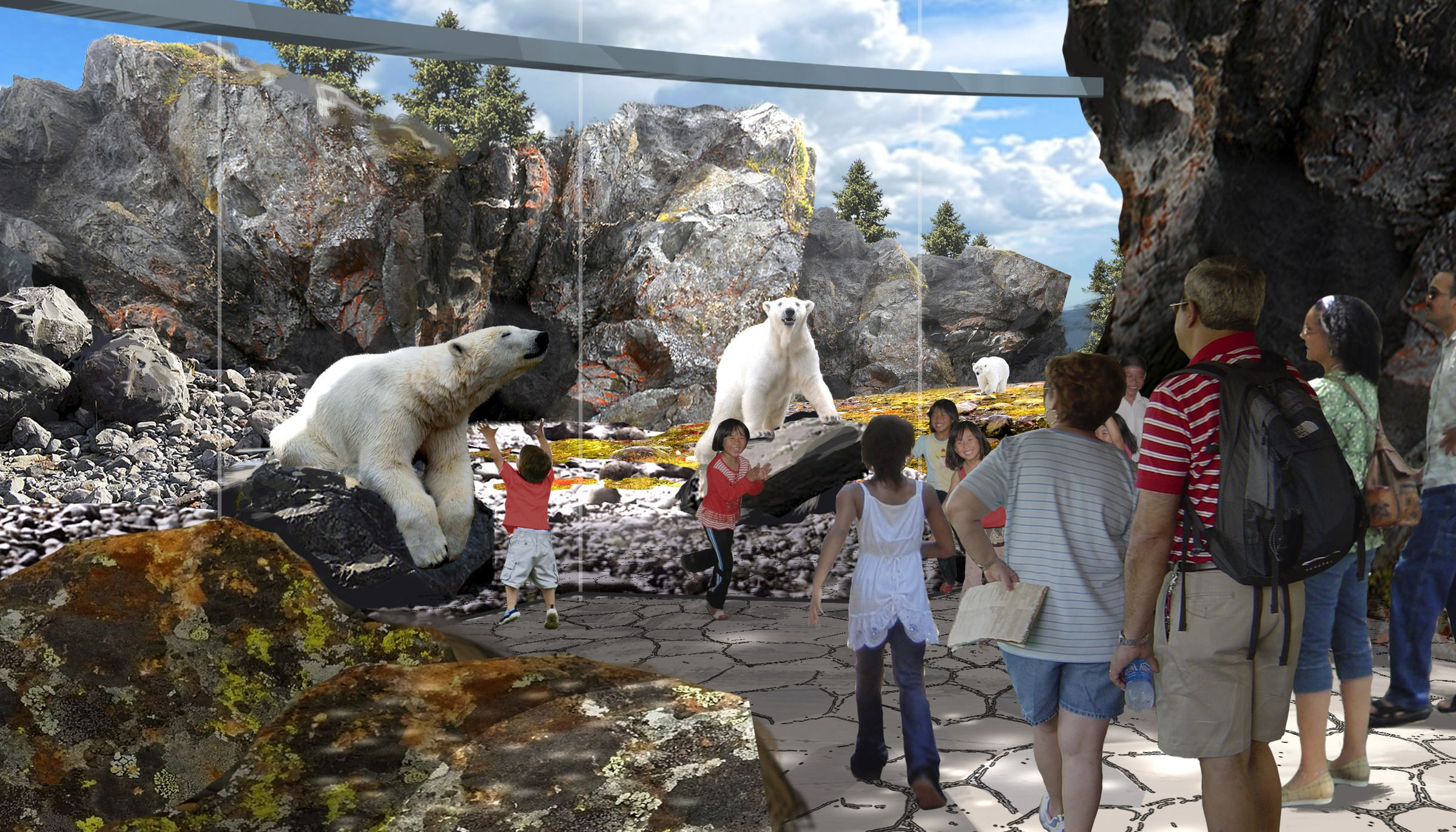 image relating to Printable Riverbanks Zoo Coupons known as Saint Louis Zoo McDonnell Polar Undergo Simple fact as a result of PGAV