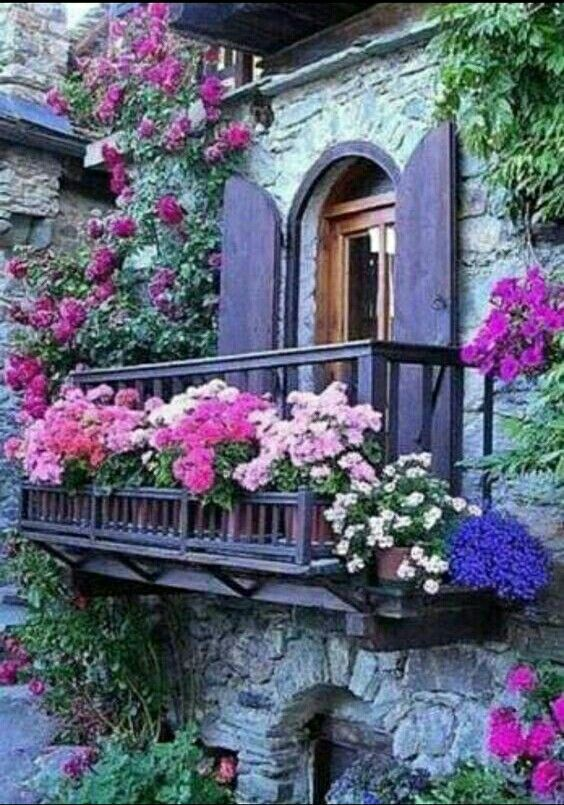 Pin by Cheryl Berry on Portals Pinterest Garden, Flowers and Balcony