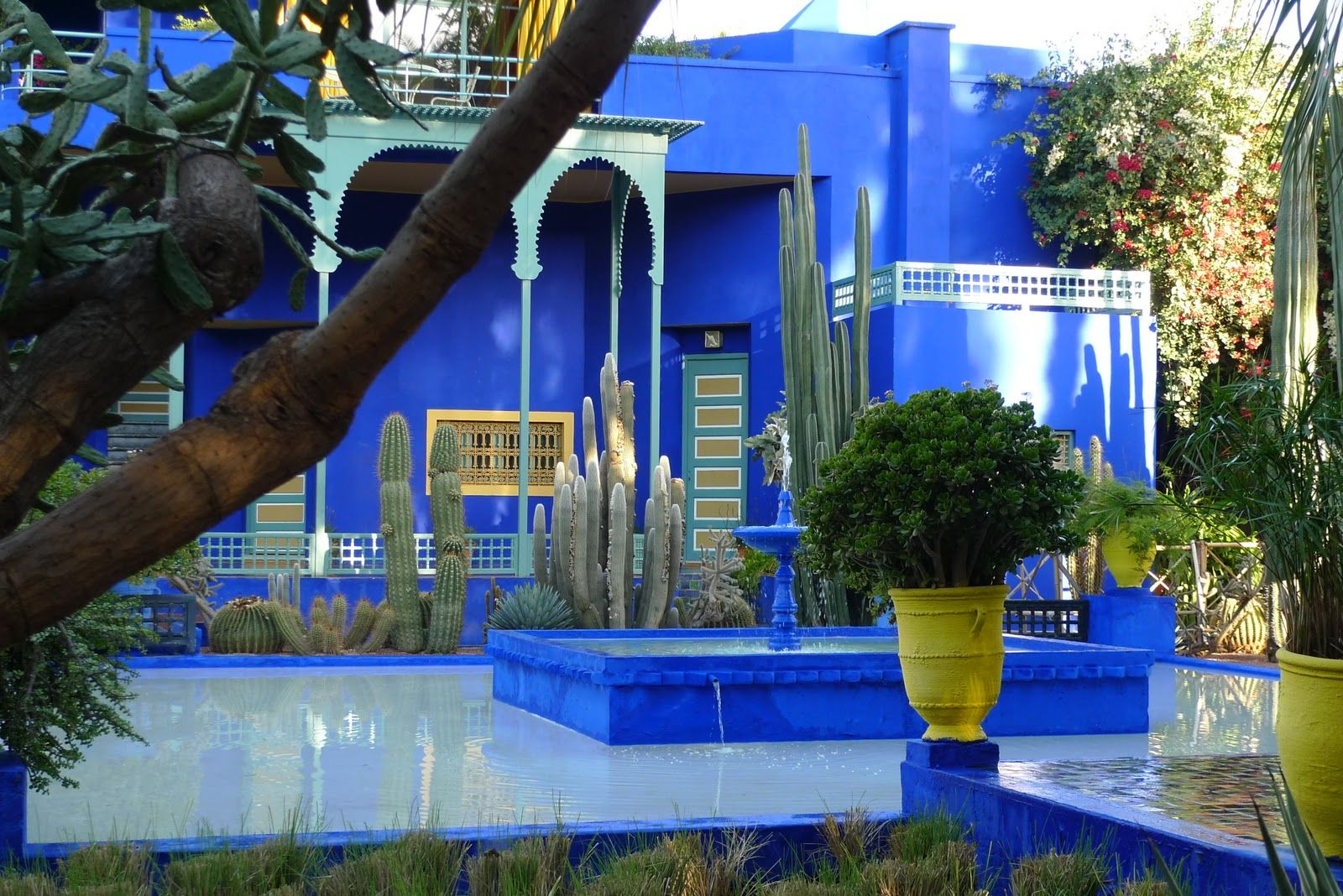 jardin majorelle monuments du maroc gites atlas le jardin majorelle pinterest jardin. Black Bedroom Furniture Sets. Home Design Ideas