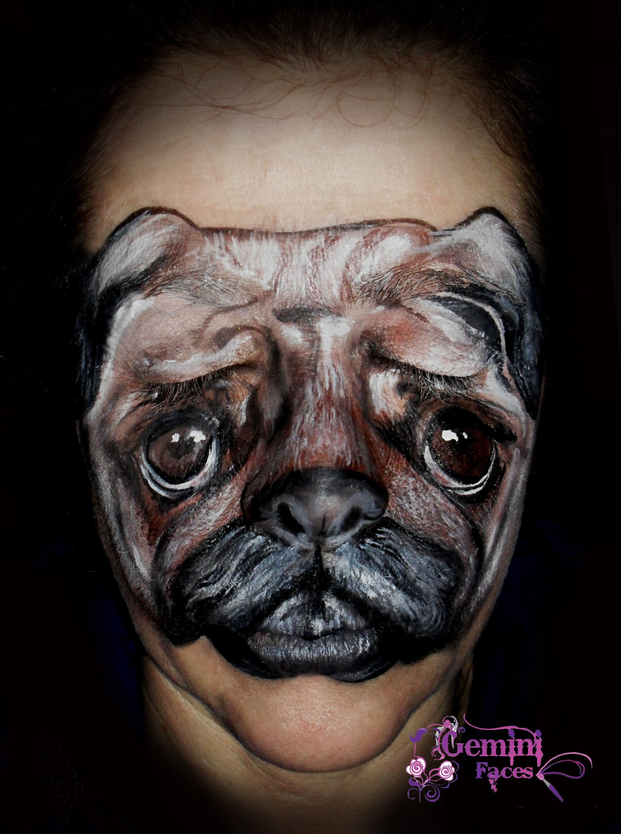 Pug Face Paint Animal Face Paintings Animal Faces Animals