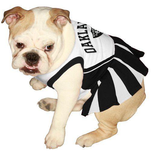 NCAA Hawaii Rainbow Warriors Cheerleader Dog Dress Tiny