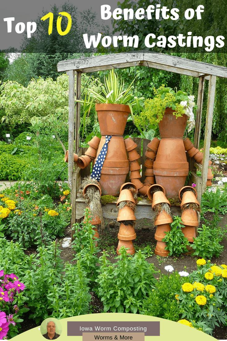 Top 10 Benefits Of Worm Castings Worm Composting Diy Garden
