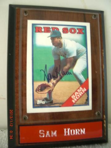 Sam Horn Autographed Topps Baseball Card in Plaque | crazycollectors.com