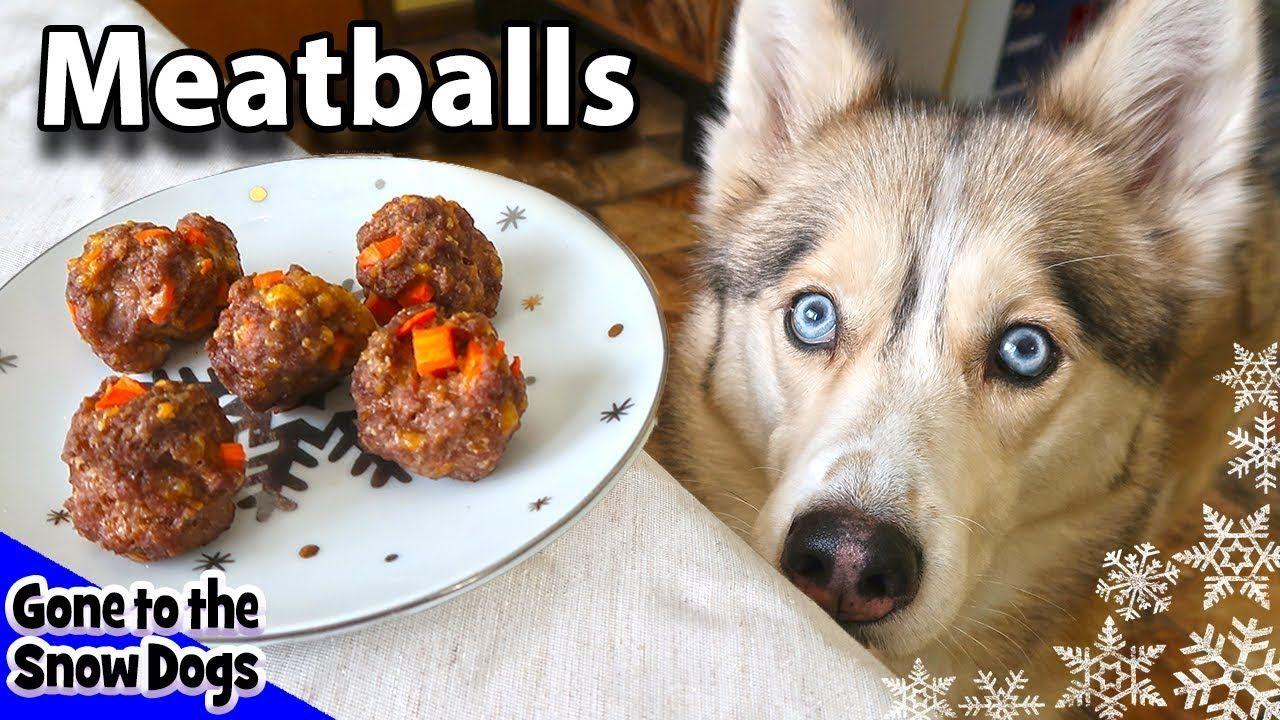 Homemade Meatballs For Dogs Diy Dog Treats Recipe 92 Homemade